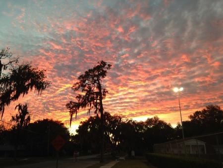 the setting sun: Setting sun in Florida