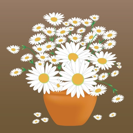 A beautiful bouquet of daisies