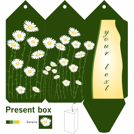 Gift box template with daisy Vector