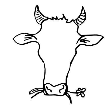 trustful: Cow Head Hand Drawing. Line Art. The Cow is Shewing a Flower.
