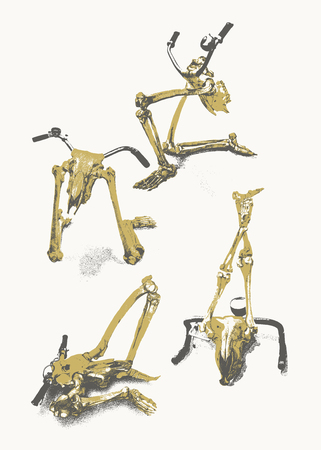 biomechanics: A scary combination between a human skeleton ( legs ), a ruminants skull and bicycle handles . The handles replace the antlers on the deer like animal head.