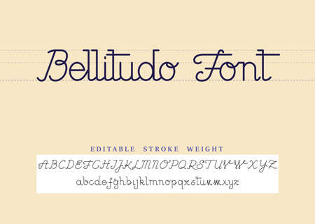 Bellitudo font is a calligraphic old style hand writing. The strokes are not expanded so the stroke weight is editable.  イラスト・ベクター素材