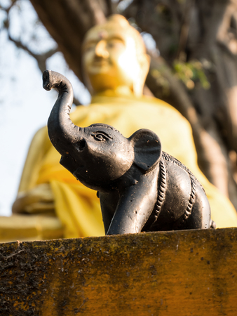 Elephant sculpture in front of golden Buddha Sculpture 스톡 콘텐츠