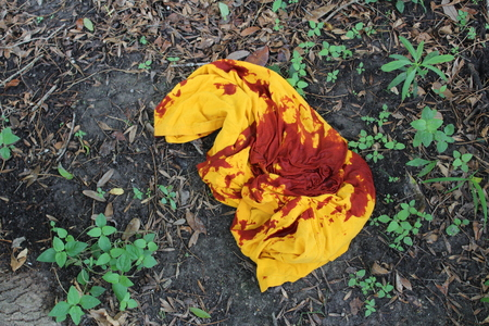 Bloody Shirt in Woods