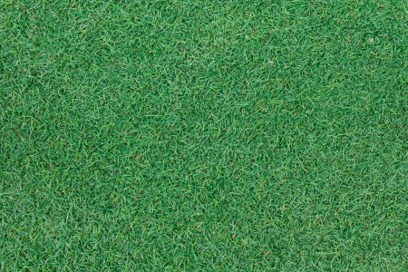 blade of grass: Background texture with fake grass in a public children playground, top view Stock Photo