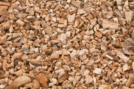 Wood chippings and coconut pieces background. Organic fertilizer Stock Photo - 12450631