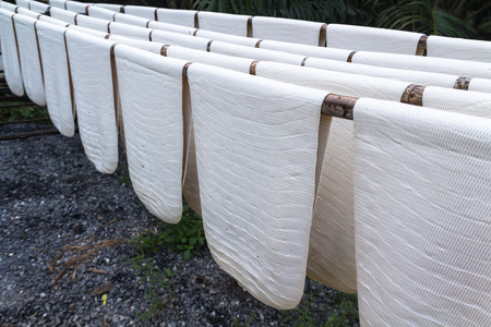 rubber sheet: Rubber sheet to dry in southern Thailand