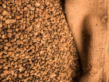 frijoles: los granos de caf� sin tostar verdes en saco. Foto de archivo