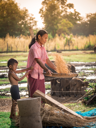 Aziatische vrouwen ziften rijst rijst aparte tussen rijst en rijst chaf.