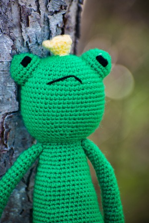 Knitted frog. Handmade toy - green frog for baby. Frog Traveler. Frog princess. Фото со стока