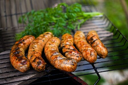 Appetizing grilled bavarian sausages on grate with parsley and dill.