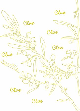 Olive tree branches. Creative Hand drawn . Vector Illustration.