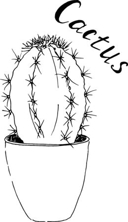 Black and white sketch of succulent in pot. Hand drawn cactus. Vector, illustration. 일러스트