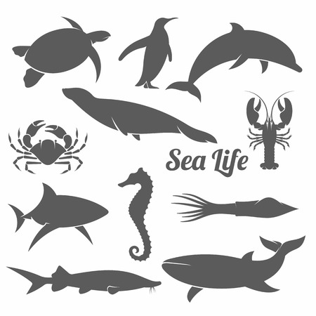 動物: 最小限のスタイルの海の動物のシルエットの黒と白のベクトル図セット
