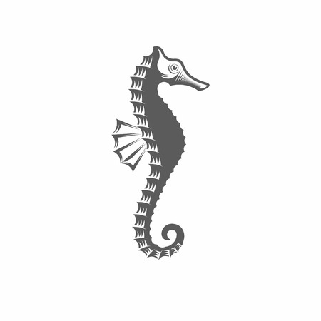 Vector illustration of a seahorse in the old-fashioned style and line-art style. Can be used as a tattoo Illusztráció