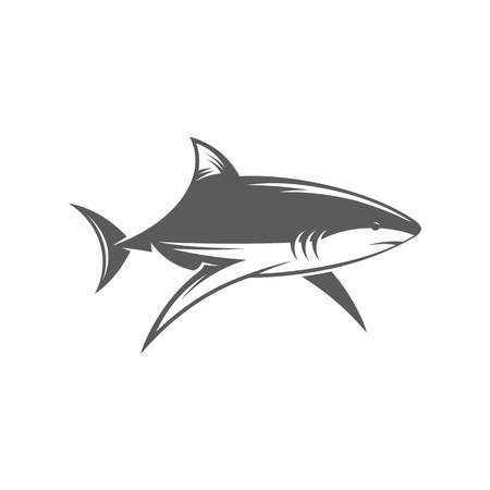 aqueous: Vector illustration of a shark in the old-fashioned style and line-art style. Can be used as a tattoo Illustration