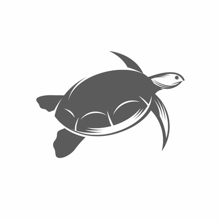 Vector illustration of a turtle in the old-fashioned style and line-art style. Can be used as a tattoo