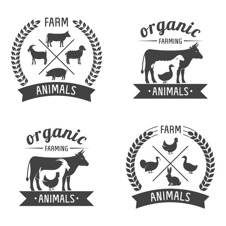 cow grass: Vector Illustration logos and badges farm animals isolated or white background