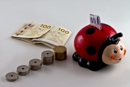 danish: A piggy bank shaped as a ladybird with Danish currency around. isolated on light background