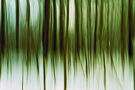 Abstraction of the transition between winter and spring