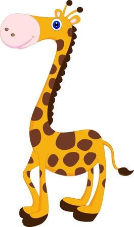 jirafa cute: lindo de la jirafa de dibujos animados