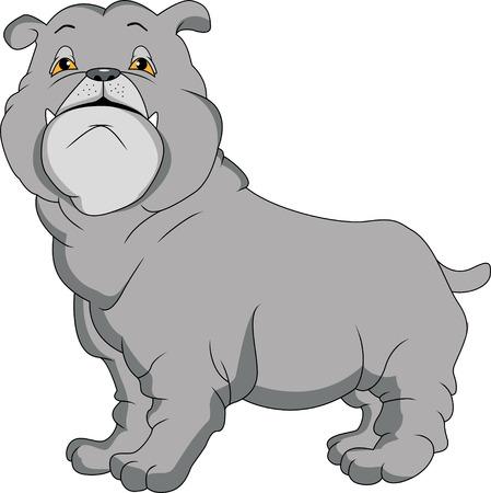english bulldog: english bulldog cartoon Illustration