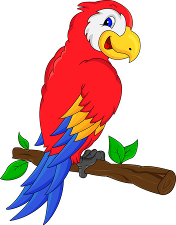 black beak: macaw bird cartoon Illustration