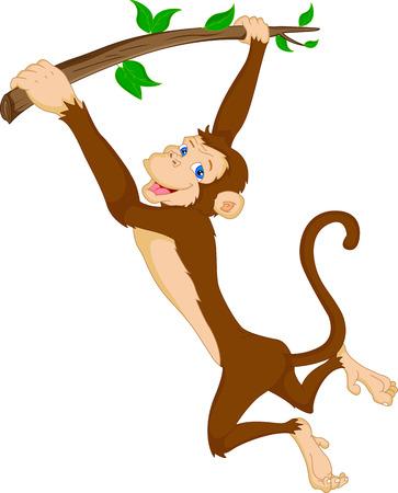 baby monkey: cute monkey hanging