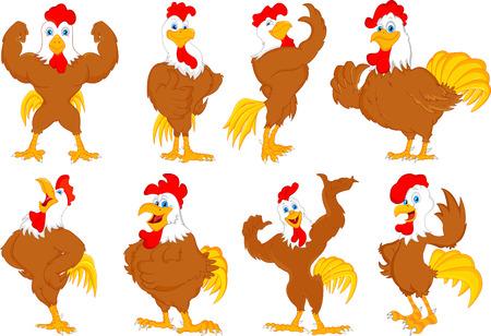 pollo caricatura: de dibujos animados distintos gallo Vectores