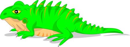 spines: cute green iguana lizard Illustration