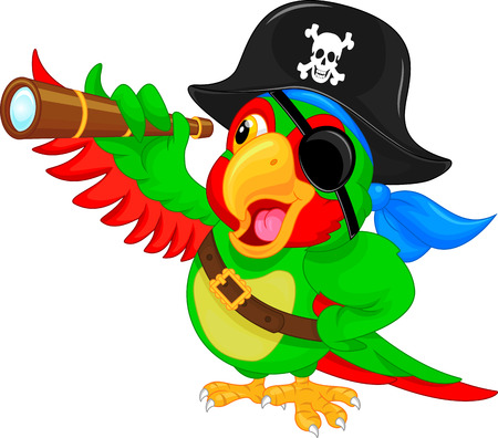 pirate skull: pirate parrot cartoon