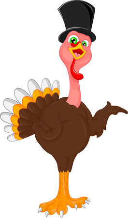 turkey bird: cute turkey bird cartoon Illustration