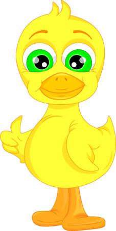 pato caricatura: Cute baby duck cartoon thumb up