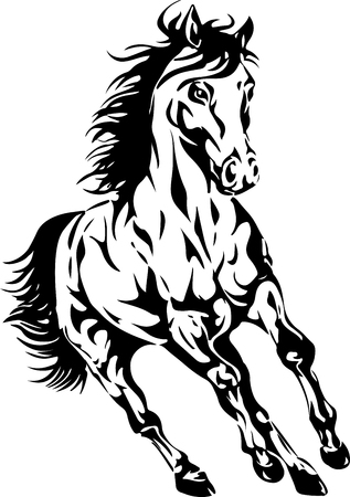 mustang horses: silhouette of a horse Illustration