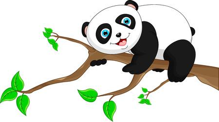 funny baby: Cute funny baby panda