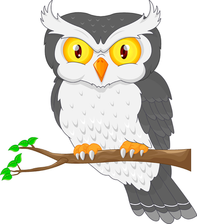 head wise: Cartoon owl bird posing on the tree