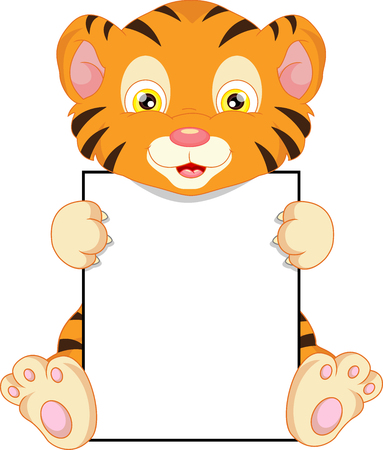 tigre bebe: historieta del tigre de bebé lindo y muestra en blanco Vectores