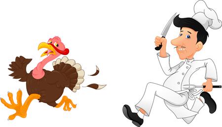 Cartoon chef chasing a turkey Vector illustration.