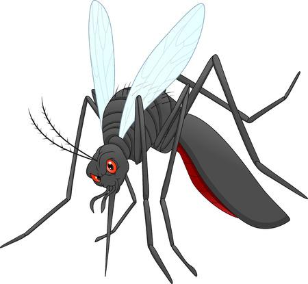 angry mosquito cartoon Illustration