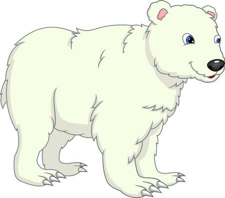 cute polar bear cartoon on a white background