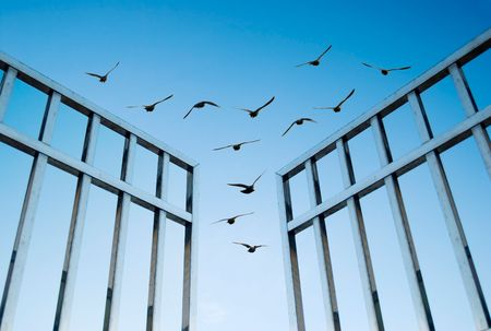 exit: birds fly over the open gate, concept of success and freedom