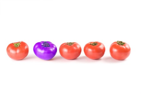 differentiate: Different than the rest, alone, blue tomatoes. Red fresh tomatoes isolated on white background