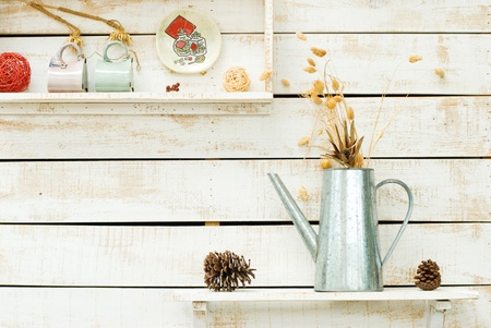 Plants on white rough wooden wall as Decoration Stock Photo - 8865627