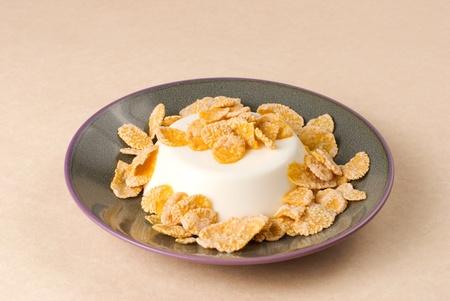 pannacotta: White milk pudding with sweet crisp, panna-cotta Stock Photo