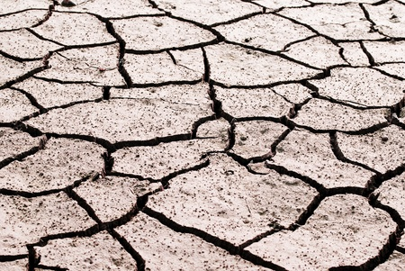 Drought land was cracked. The lake is drying.  photo