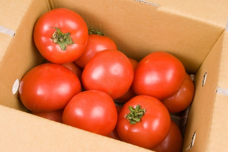 Fresh red tomatoes in paper box for sale. photo