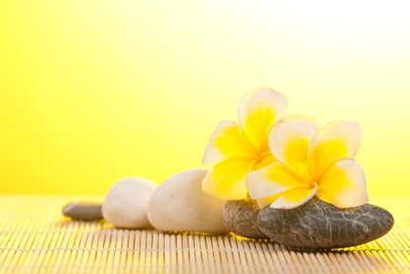 Leelawadee flower and pebbles on bamboo background under warm sunshine photo