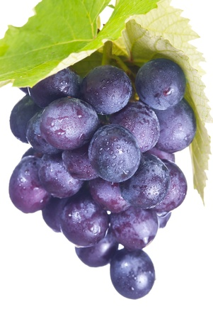 Isolated fresh grapes with drops and green leaf