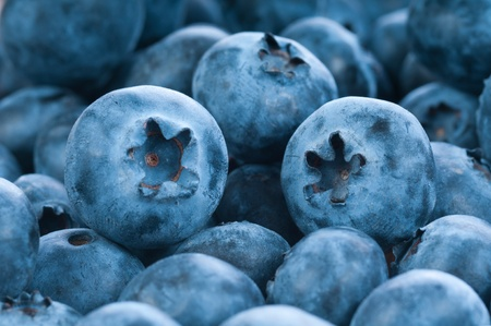 Fresh blue berries group as background, seasonal fruit  Stock Photo - 12615347