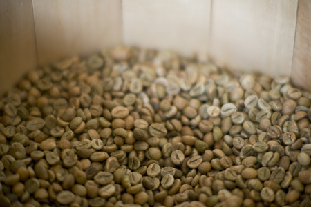 unroasted: A pile of green coffee beans unroasted